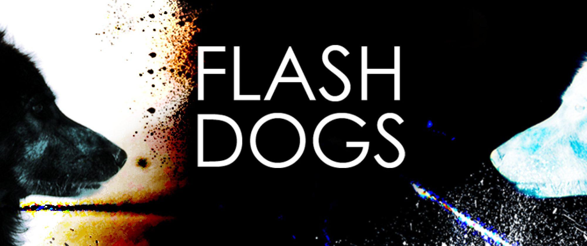 FlashDogs